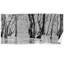 Milky Menindee Waters - Photo Painting Poster