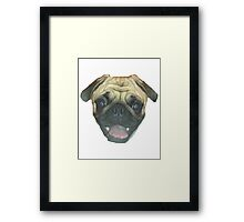 Pugsler Daisy Framed Print