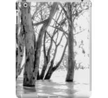 Milky Menindee Waters iPad Case/Skin