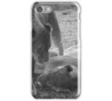 Affectionate Lions iPhone Case/Skin