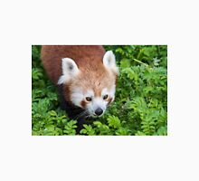 Red Panda close up of face Unisex T-Shirt
