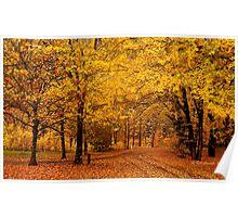 A golden autumn day Poster