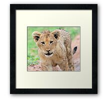No you can`t pat me ! Framed Print