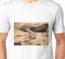 Meerkat on a rock Unisex T-Shirt