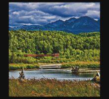 Alaska Potter Marsh Boadwalk One Piece - Short Sleeve