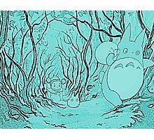 Monochrome Totoro Photographic Print