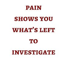 Byron Katie: The  pain  shows you what's left to investigate by IdeasForArtists