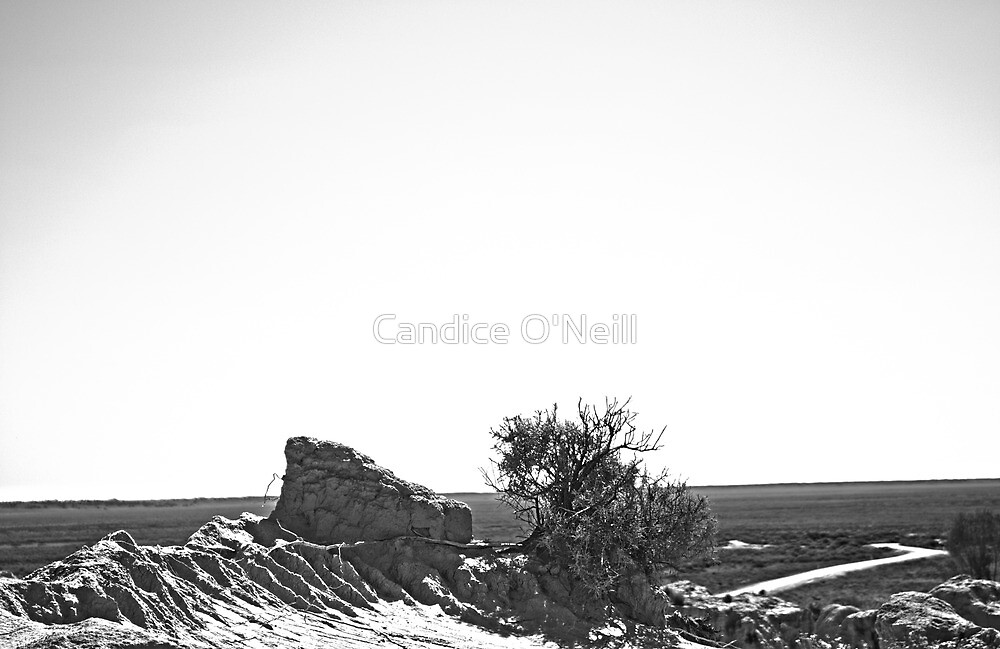 Mungo Skyline B&W by Candice O'Neill