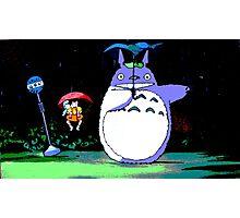 Totoro mix up! Photographic Print