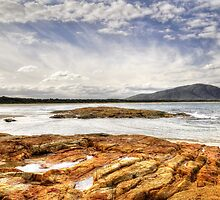 Crowdy Bay by Terry Everson