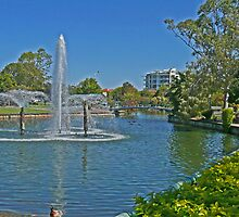 Redcliffe Water Garden by Margaret  Hyde
