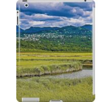 Potter Marsh Alaska iPad Case/Skin