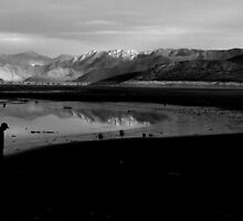Reflect and Walk Away by Corri Gryting Gutzman
