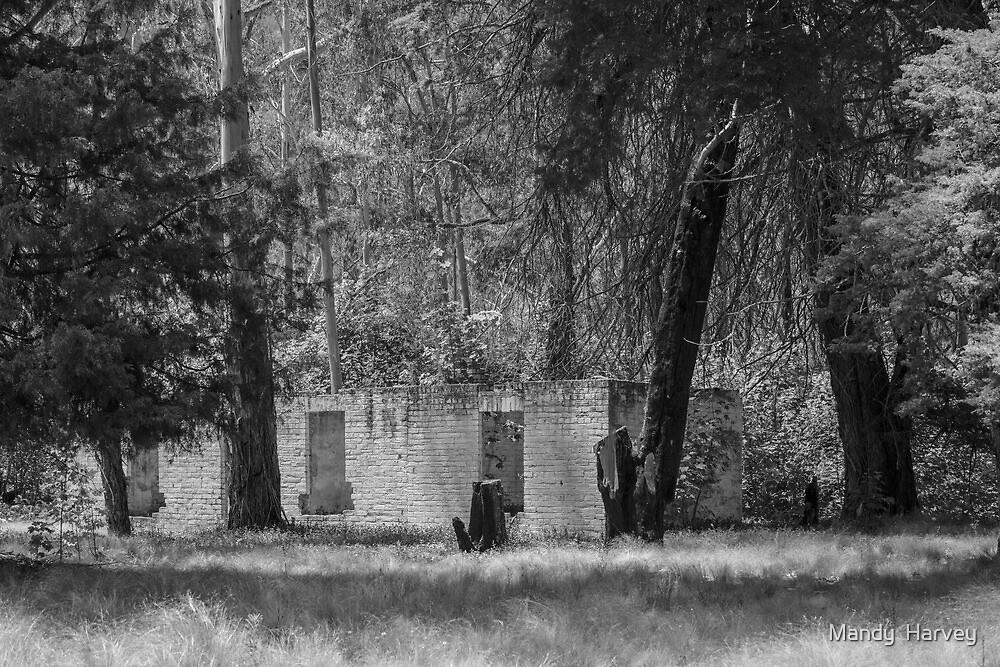 Joadja Ruins - Black And White by Mandy  Harvey