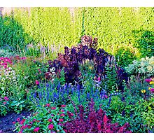 tapestry of colours Photographic Print
