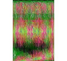 Lime and pink fury abstract. Photographic Print