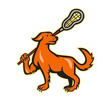 Dog With Lacrosse Stick Side View  by patrimonio