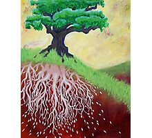 I am Nurtured by Mother Earth Photographic Print