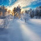 Winter Light II by Mikko Lagerstedt