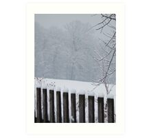 A Wild Snow Scene in a Forest Art Print