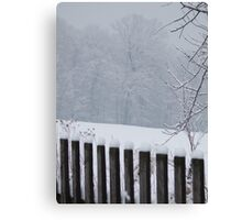 A Wild Snow Scene in a Forest Canvas Print