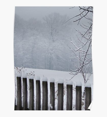 A Wild Snow Scene in a Forest Poster