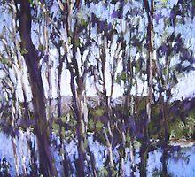 Beaches, rivers & lakes - Australia by Terri Maddock