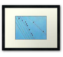 Birds Wires 13 Framed Print