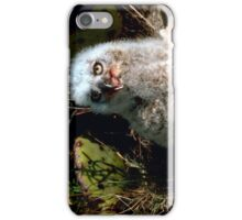 Great Horned Owlet iPhone Case/Skin