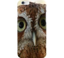 Owl 2 iPhone Case/Skin