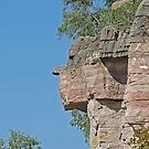 Face on the Wall, Geikie Gorge, Kimberley, Western Australia by Margaret  Hyde