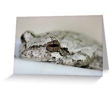 Albino Frog Greeting Card