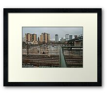 A horse in the suburb Framed Print