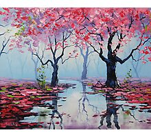 Misty Blossom Trees Photographic Print
