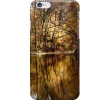 Fall Pond iPhone Case iPhone Case/Skin