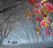 End of November by Igor Zenin