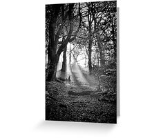 Chevin Forest Park #2 Mono Greeting Card