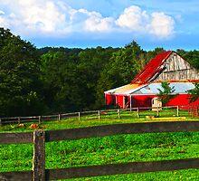 Corral and Barn  by Randy Branham