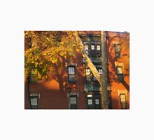 Late Afternoon Sun, Late Autumn Colors, Jersey City, New Jersey  T-Shirt