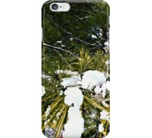 Snow Covered Pine iPhone Case/Skin