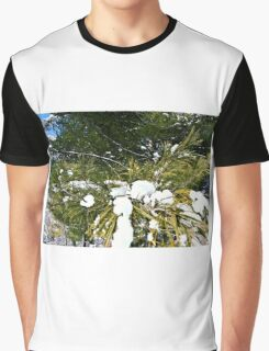 Snow Covered Pine Graphic T-Shirt