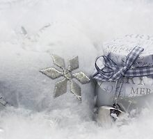 Merry Christmas by HJBH  Photography
