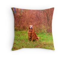Sarah Belle- Lady Of Leisure - EX Throw Pillow
