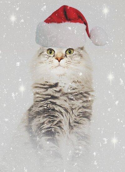 Christmas Star by Carol Bleasdale