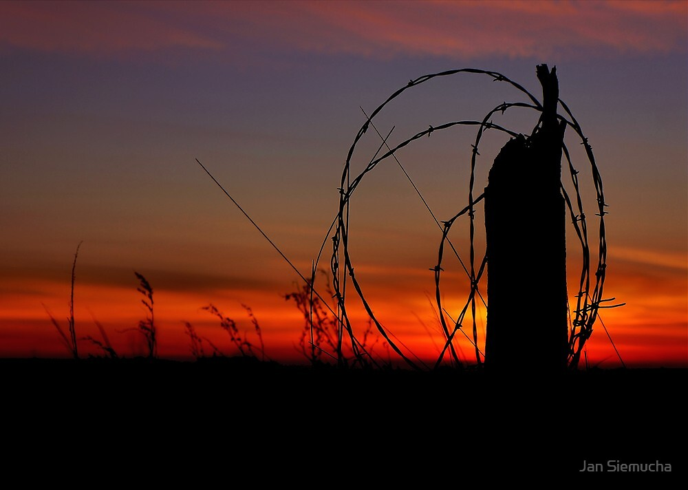 Sunset Silhouette ! by Jan Siemucha