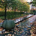 Autumn by LilyRake
