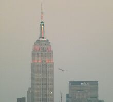 Empire State Building, Twilight View, New York City by lenspiro