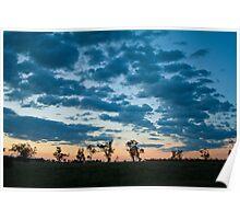 Aussie Bush Sunset Poster