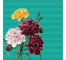 Peony Garden Photographic Print