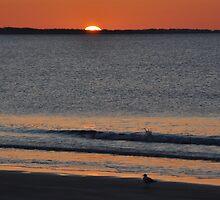 Morning Beach series 1 by MikeCwynar